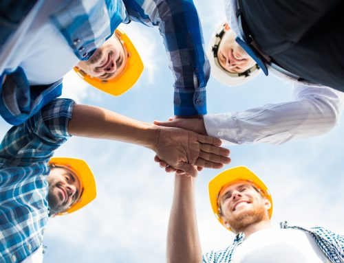 What does a Safety Consultant do?